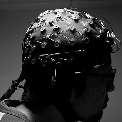 Picture d'un cerveau sensoriel